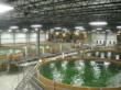 Bell Aquaculture's Recently Completed Row 3 Expansion